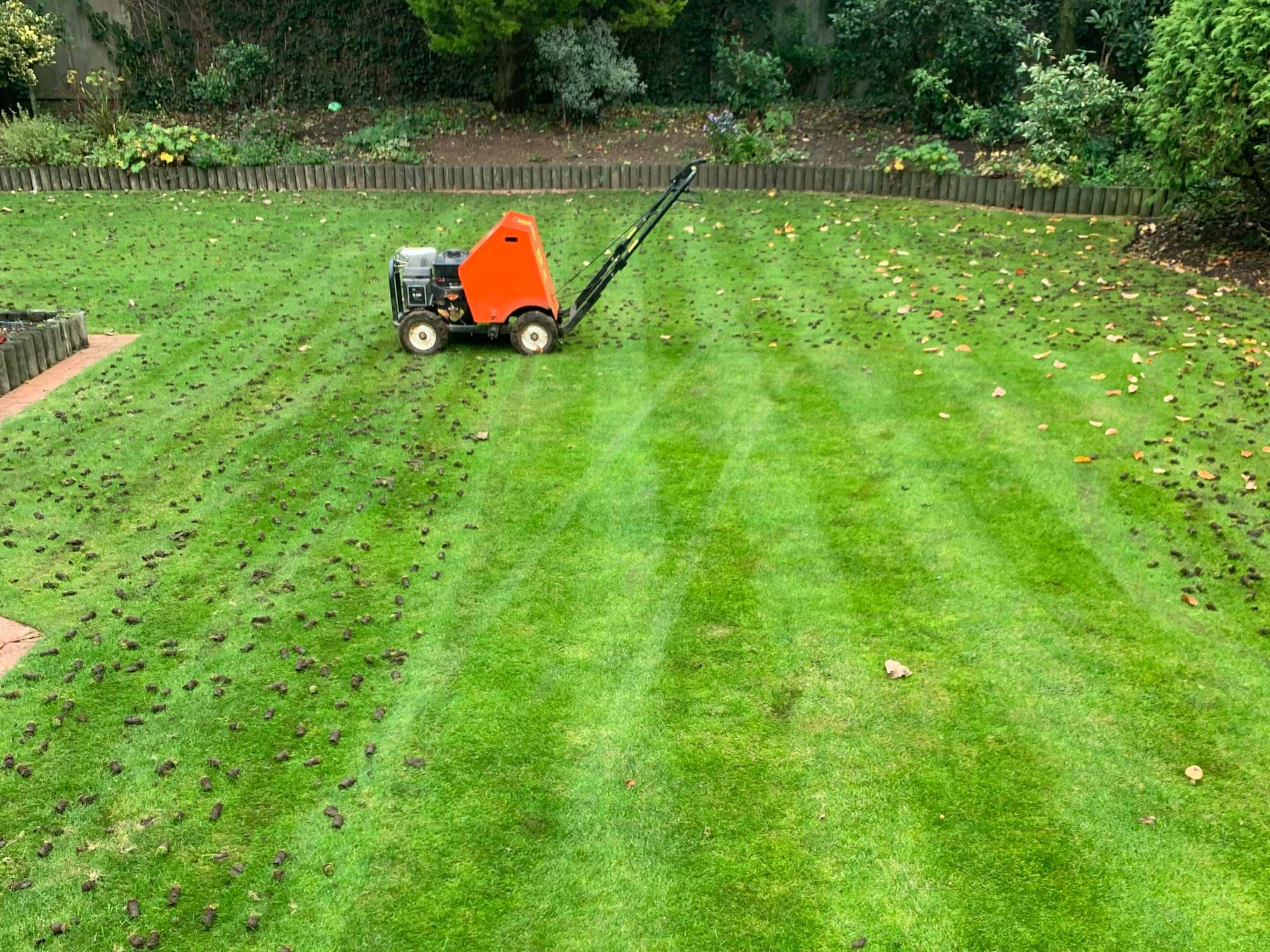 Lawn Aeration 2