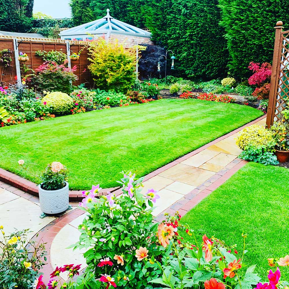 Lawn Care Treatments