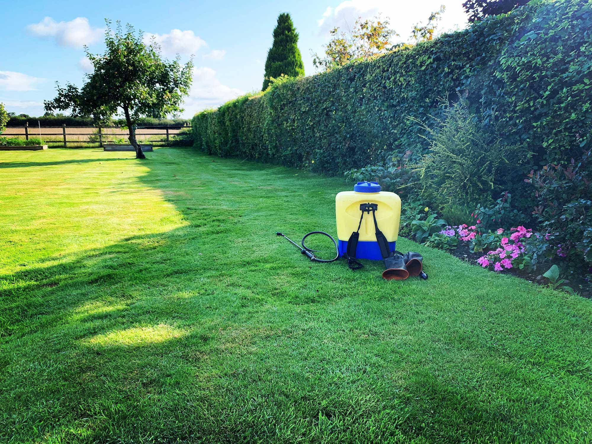 Lawn Treatment 3