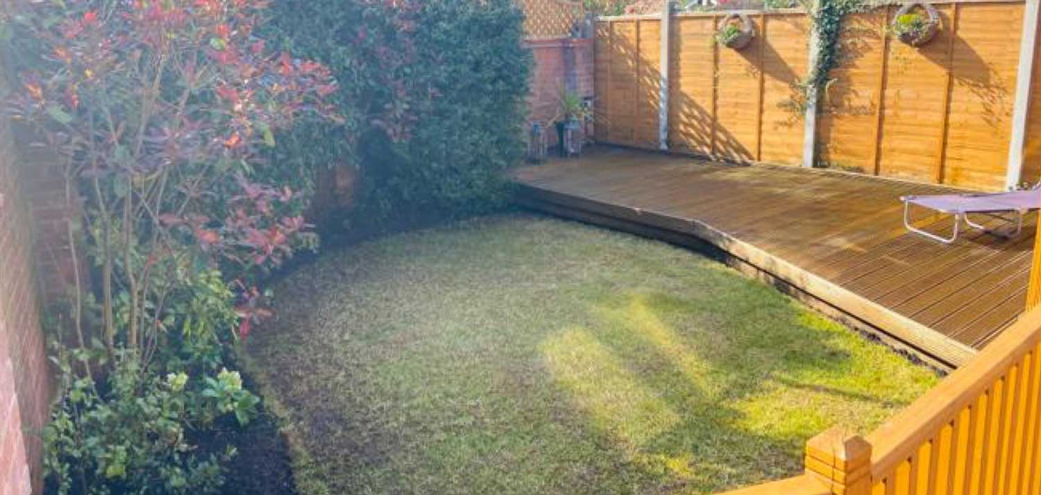Lawn Treatment Before 2